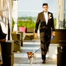 Photo Of Dog Walking Down The Aisle Wedding Reception Venues - Above Weddings